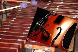 Montag, 14.03., 17 Uhr, Café Zikade – Musikalischer Nachmittag mit jungen Musikern
