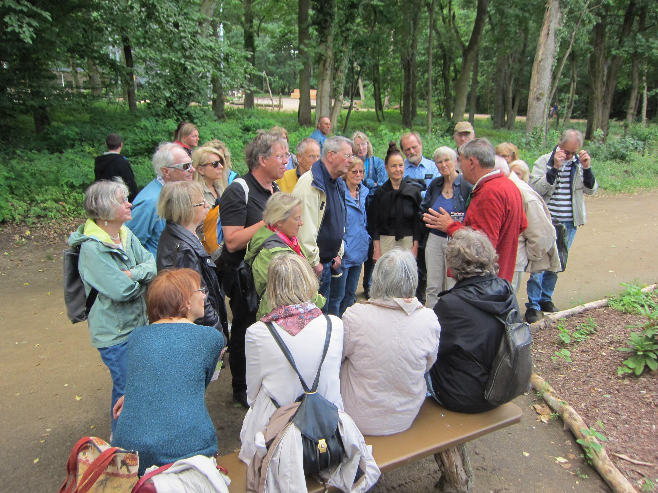 Kulturausflüge machen Spaß und bilden: Baumkronenpfad über den historischen Beelitzer Heilstätten