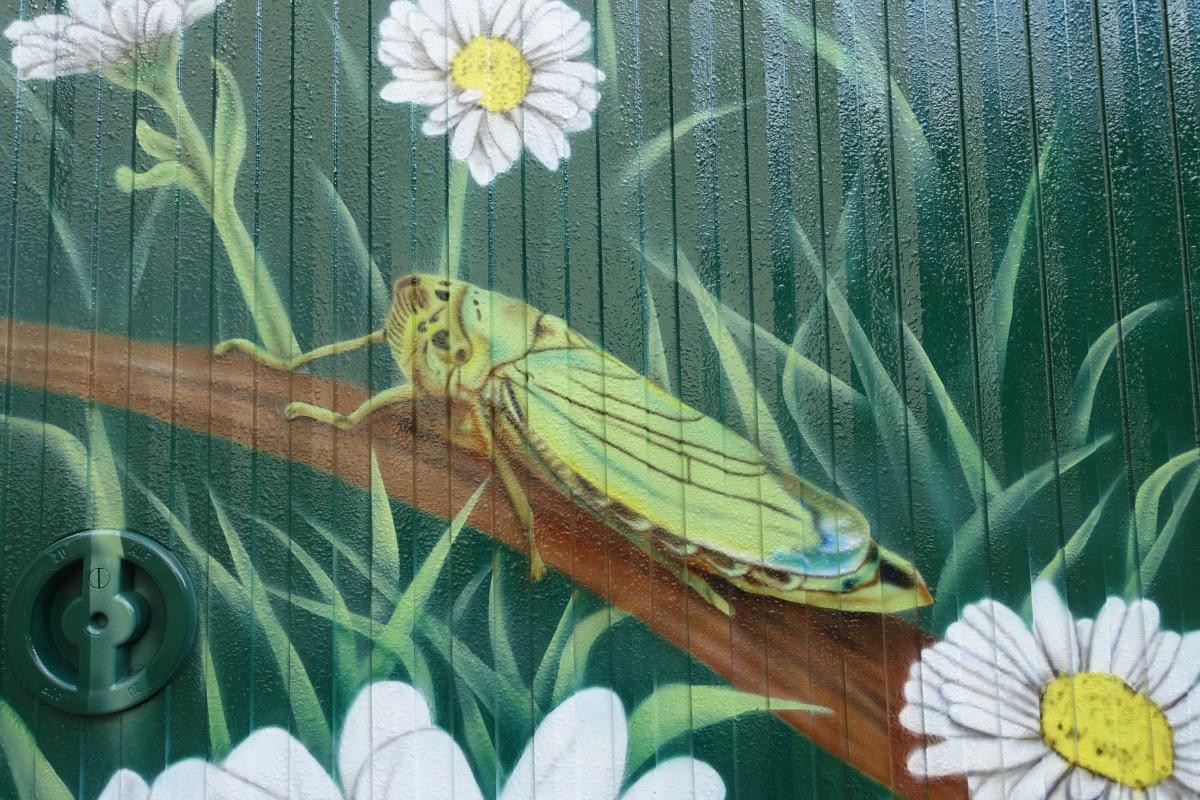 Straßenkunst vor dem Haus Eichkamp: eine Zikade